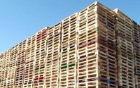 pallet fencing business ireland - 1