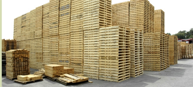 pallet fencing business ireland - 5