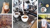 established coffee bean equipment - 1